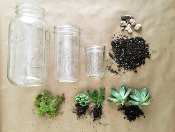 Succulent Plants In Mason Jars How To Make A Perfect Hostess Gift